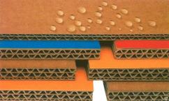 ГП «ПЦБК» представила влагостойкий гофрокартон Water — RCB
